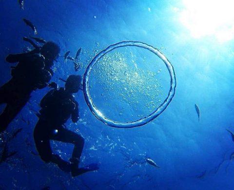 浮潛,潛水,旅遊, 釣魚,水上活動,畢業旅行,日本旅遊,自駕游,優惠卷,玩水,青洞,中文,日本自由行,推薦景點
